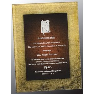 Gold and Burgundy Acrylic Art Plaque Award